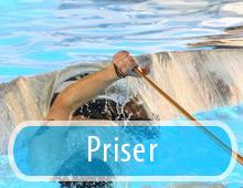 Akit/Priser